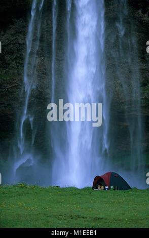 L'Islande. Seljalandsfoss. Woman Reading book in tent, cascade de Seljalandsfoss en arrière-plan. Camping