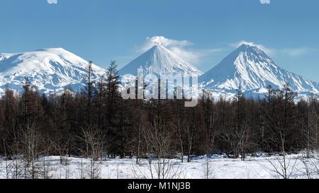 Paysage de montagne Hiver Panorama du Kamchatka: éruption volcan actif Klyuchevskaya Sopka, volcans enneigés du Banque D'Images