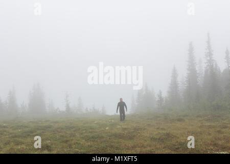 Dans l'homme dans la forêt brumeuse, Suède Jamtland Banque D'Images