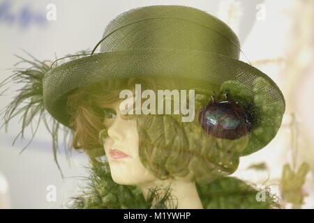 Double exposition avec tête poupées insect Banque D'Images