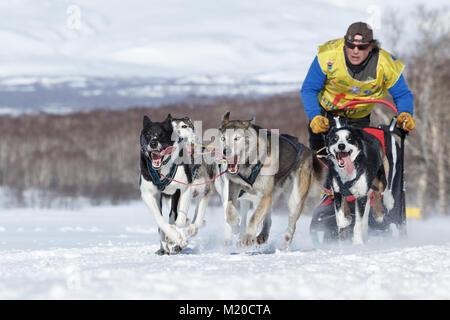 L'exécution de l'équipe de chiens de traîneau. Semashkin Andrey musher du Kamtchatka Course de chiens de traîneau Banque D'Images