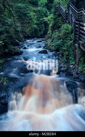 Cascade de Glenariff Forest Park, dans le comté d'Antrim, en Irlande du Nord Banque D'Images