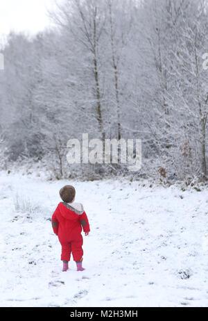 Deux ans Felix Cox, regarde le paysage de neige en forêt Hargate à Tunbridge Wells, Kent après chute de neige la nuit.