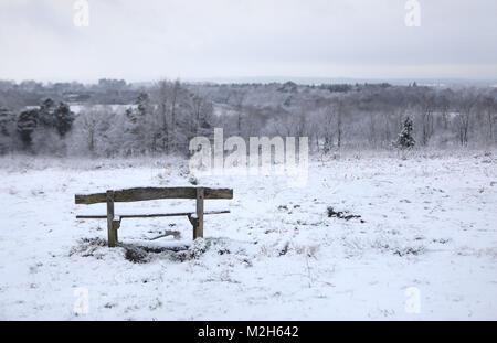 Hargate Forêt en Tunbridge Wells, Kent après chute de neige la nuit.