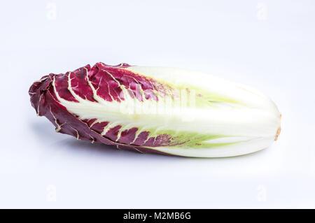 La chicorée, salade rouge isolé sur blanc. (Également connu sous le nom de chicorée rouge ou chioggia) Banque D'Images