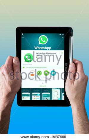 Homme tenant un Chromebook avec Whatsapp Messenger Asus, l'application de messagerie instantanée, sur l'écran. Dorset, Banque D'Images