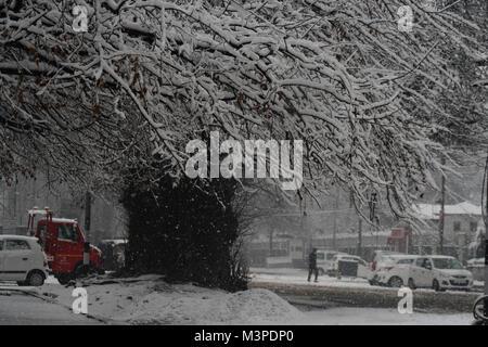 Srinagar, au Cachemire. 12 Février, 2018. Un homme marche du Cachemire en vertu de l'arbre couvert de neige. Neige modérée à forte a commencé dans la vallée en pluie fouetté les plaines sur la rupture lundi près de deux mois de longue période de sécheresse au Jammu-et-Cachemire.La neige et la pluie est susceptible de se poursuivre jusqu'à mardi.©Sofi Suhail/Alamy Live News