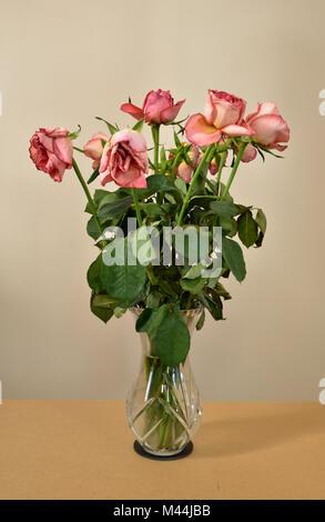 Un bouquet de roses rose meurt dans un vase de verre. Banque D'Images