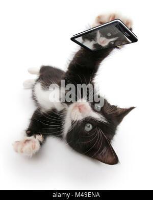 Le noir et blanc chaton, Solo, 6 semaines, prenant une des selfies. Image composite. Banque D'Images