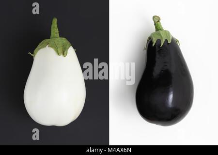 Aubergines blanches et noires et blanches isolé sur fond noir pas de racisme concept Banque D'Images