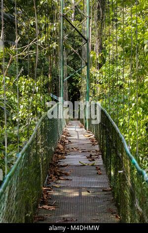 Pont suspendu dans la forêt tropicale au Costa Rica Banque D'Images
