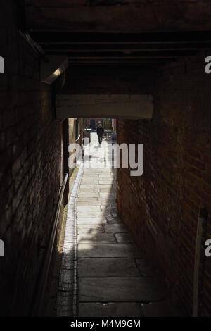Figure de l'allée sombre way,UK. Banque D'Images