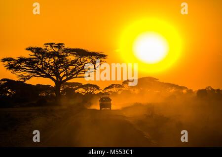 Jeep safari à travers la savane au coucher du soleil Banque D'Images