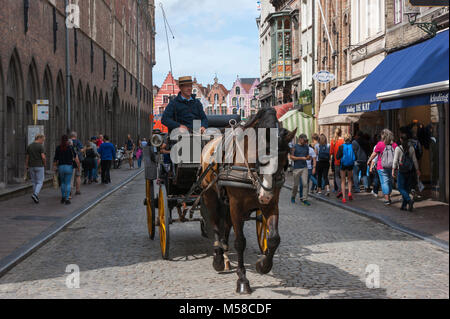 À cheval sur une visite guidée de Grote Markt (place du marché), Bruges, Belgique Banque D'Images