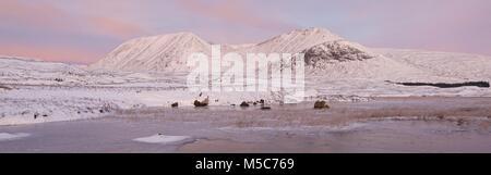 Une couleur image panorama de Rannoch Moor. Cela a été pris sur un matin d'Hivers à le mont noir vont de la West Banque D'Images