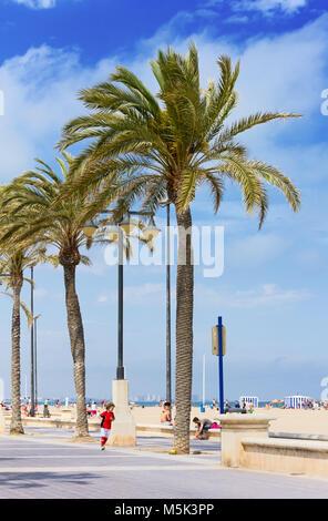 VALENCIA, Espagne - 25 Avril 2014: petit garçon joue balle au pied de grands palmiers sur la plage de sable de plage de la ville Banque D'Images