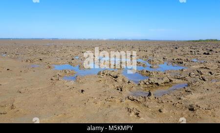 Mer du Nord par marée basse avec boue
