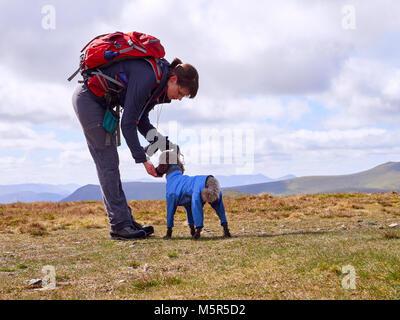 Un randonneur de nourrir leur chien quelques biscuits pour maintenir leurs niveaux d'énergie sur une longue marche Banque D'Images