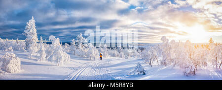 Vue panoramique de jeune homme le ski de fond sur une piste dans le magnifique décor hivernal féérique en Scandinavie Banque D'Images