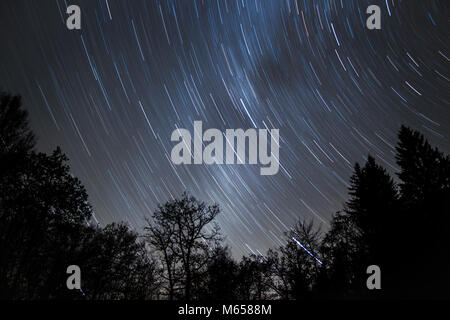 Plus Startrails woods sur une froide nuit d'hiver avec voie lactée brille à travers. Banque D'Images