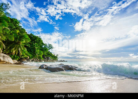 Amazing beau paradis tropical beach de rochers, palmiers et eau turquoise sous le soleil à l'anse georgette, Praslin, seychelles