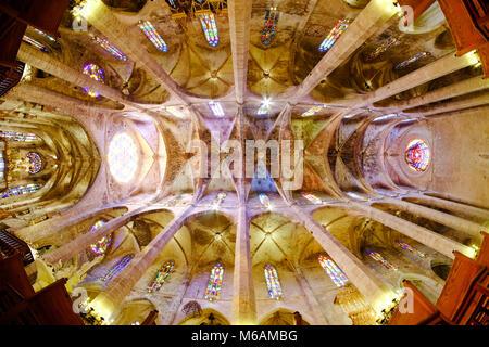 La Seu, la célèbre cathédrale médiévale catholique à Palma de Majorque, vue de l'intérieur avec objectif fish-eye Banque D'Images