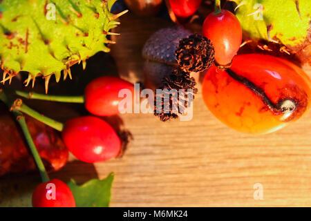 La vie encore automne, châtaigne, châton, champignons avec de la pierre sur le bois Banque D'Images