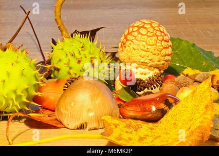 La vie encore l'automne, champignons, châtaignes, châton et pierre avec fond de bois Banque D'Images