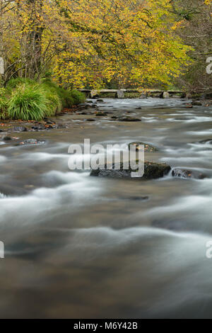 Couleurs d'automne sur les rives de la rivière Barle à Tarr Étapes, Exmoor, Somerset, England, UK
