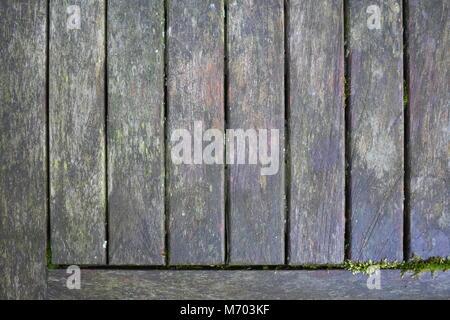 Vieux banc en teck gris avec mousse verte poussant sur elle Banque D'Images