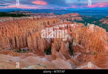 Crépuscule, Wall Street, le Parc National de Bryce Canyon, Utah Banque D'Images