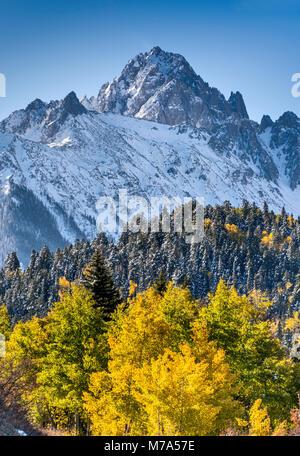 Mount Sneffels sous la neige, aspen grove, à la fin de l'automne, vue de Dallas Creek Road, San Juan, montagnes Banque D'Images