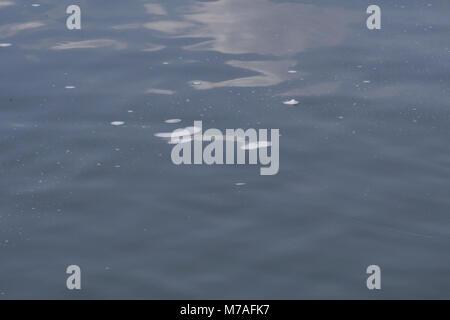Flou d'eau dans la rivière. Banque D'Images