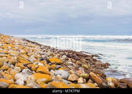 Rivage rocheux sur un littoral rugueux station à Cape Town Afrique du Sud Banque D'Images