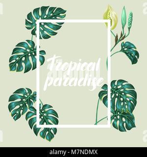 Châssis avec feuilles de monstera. Image décoration de fleurs et feuillages tropicaux. Pour la conception de brochures Banque D'Images