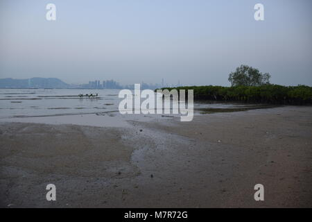 La baie de Shenzhen et skyline vu de nouveaux territoires, Hong Kong Banque D'Images