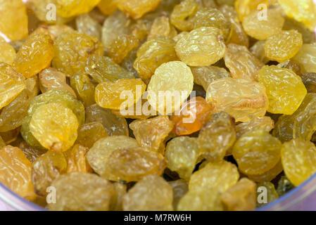 Arrière-plan de grands raisins secs jaune close up. Banque D'Images