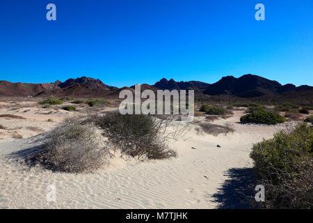 Plage tecolote Baja California Sur Banque D'Images