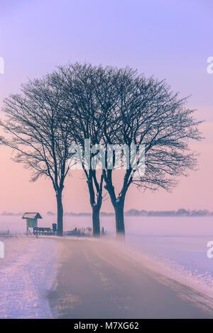 L'hiver en Hollande dans les Kroonpolder près de Drieborg, loin au nord du nord de la province de Groningen, Pays Banque D'Images