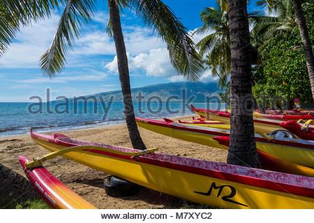 Pirogues sur Sugar Beach au Kihei Canoe Club en Kihei sur l'île de Maui, dans l'État de New York USA Banque D'Images