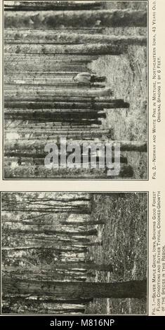 Bulletin du Ministère de l'Agriculture des États-Unis (1913) (20313302949)
