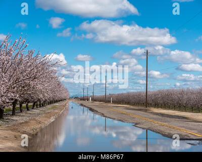 Les nuages blancs et Ciel Bleu reflété sur grande flaque sur Farm Road, en face de la ferme de l'Amandier Banque D'Images