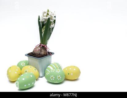 Jacinthe blanche dans des pots avec des oeufs de Pâques autour de osplated sur fond blanc Banque D'Images