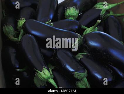 Des tas d'aubergines fraîches close up Banque D'Images