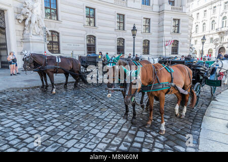 Transport de chevaux en face de la Hofburg, Michaelerplatz, Vienne, Autriche, Europe Banque D'Images