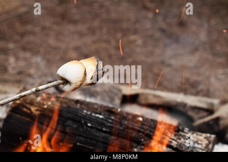 Deux guimauves grillées sur un bâton au-dessus d'un feu de camp au parc. Banque D'Images