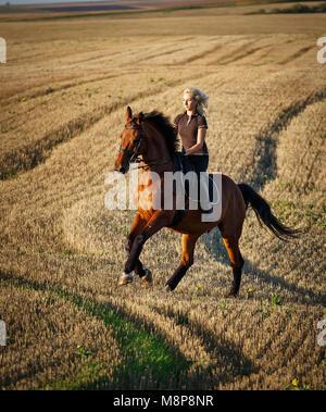 Image de cheval avec cavalier de dressage concours de sports équestres. Détails de l'équipement équestre Banque D'Images