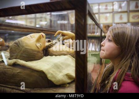 Florence. L'Italie. Enfant (7ans) à la recherche à l'un des modèles anatomiques en cire du 18ème siècle à l'affiche Banque D'Images