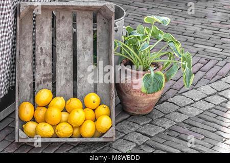 Une boîte en bois avec des citrons à l'aide d'un pot de fleurs à côté de lui Banque D'Images