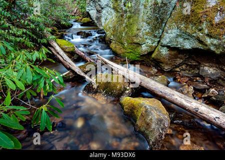S'écoulant Creek près de Moore Cove Falls - Pisgah National Forest, Brevard, North Carolina, USA Banque D'Images
